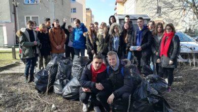 Photo of Mławscy uczniowie posprzątali las. Zebrali 30 worków śmieci
