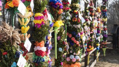 Photo of Palmy tradycyjne. Konkurs w skansenie