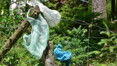 Photo of Mławski las pełen śmieci. Wyrzucają je spacerowicze i kierowcy