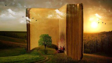 Photo of Starostowie powiatu sierpeckiego będą czytali dzieciom książki