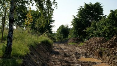 Photo of Miliony na remont dróg gruntowych w naszym regionie