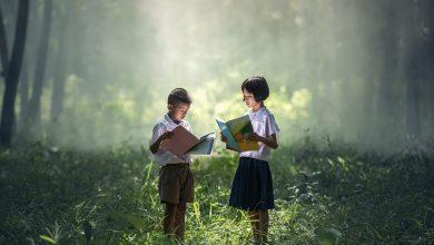 Photo of Książka dla dzieci w działdowskiej bibliotece