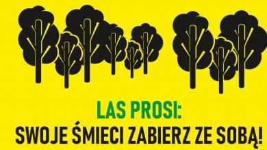 Photo of Mławskie lasy proszą, żeby nie zostawić na ich terenie śmieci