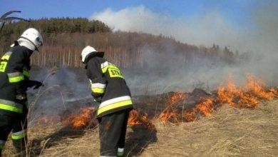 Photo of Podpalił pole, las i budynek. Jest już w rękach policji