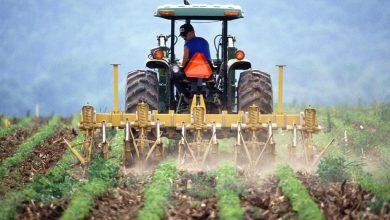 Photo of Rolnicy z gminy Zawidz będą mogli oddać odpady poprodukcyjne
