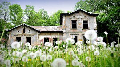 Photo of Ruszyły prace związane z ratowaniem zabytkowego dworu w Kliczewie