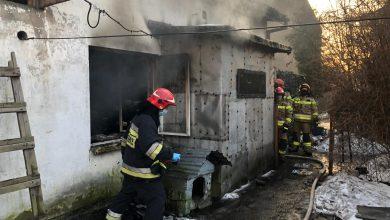 Photo of Mieszkaniec Ciechanowa zginął w pożarze