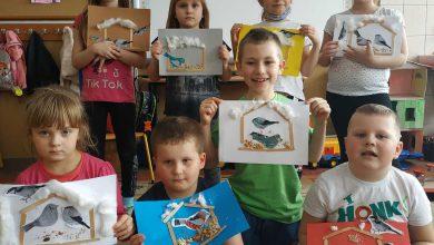 Photo of Dokarmianie zwierząt i rozpoznawanie tropów na zajęciach dla dzieci