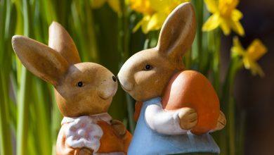 Photo of Wielkanocny konkurs na ozdobę świąteczną