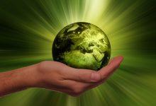 Photo of Edukacja ekologiczna celem konkursu dla uczniów z Żuromina
