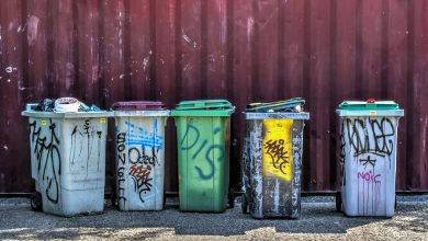 Photo of Mława: nowa umowa na wywóz śmieci. Opłaty po staremu